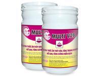 multi-v2b